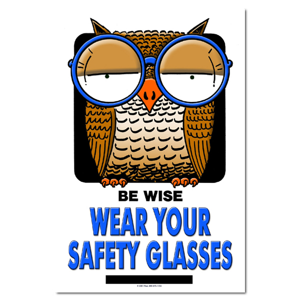 aisp132 be wise wear your safety glasses safety poster