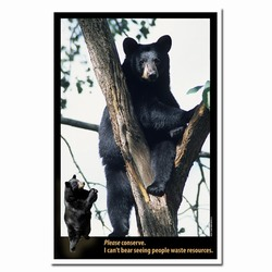 AI-PRG0011-BE1  Bear Energy Conservation Poster