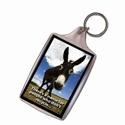 AI-PRG0011-DR2 Donkey Recycling Keychain
