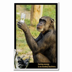 AI-PRG0011-ME1  Monkey Energy Poster