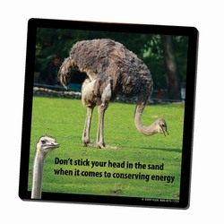 AI-PRG0011-OE4 - Ostrich Energy Mousepad