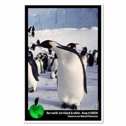 AI-PRG0011-PNGE1  Penguin Energy Poster