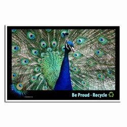 AI-PRG0011-PR1  Peacock Recycle Poster - custom poster, recycling sign