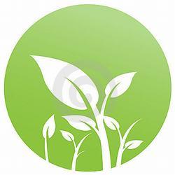 AI-eco-20 Eco Friendly- Logo Design, Eco T shirt, Eco mug, Eco Decal, Eco Friendly