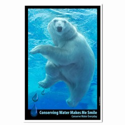 AI-PRG0011-PBW1 Polar Bear Water Poster