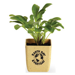 AI-rhpot004 - Flower Pot Grow Set, Recycling Incentive, Recycling Promotional Ideas, Recycling Promo Gifts, Recycling Gifts for Tradeshows, recycling ad specialties