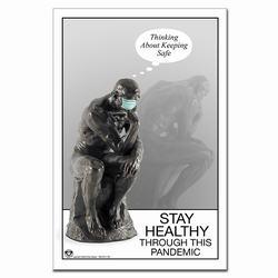 VPPoster-737 Safety Poster